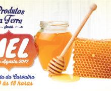 "Sertã | 20 de agosto, o Mel adoça o mercado mensal ""Produtos da Terra"""