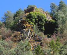 Município de Vila de Rei e ZêzereTrek unem-se em projeto de Rearborização do Penedo Furado
