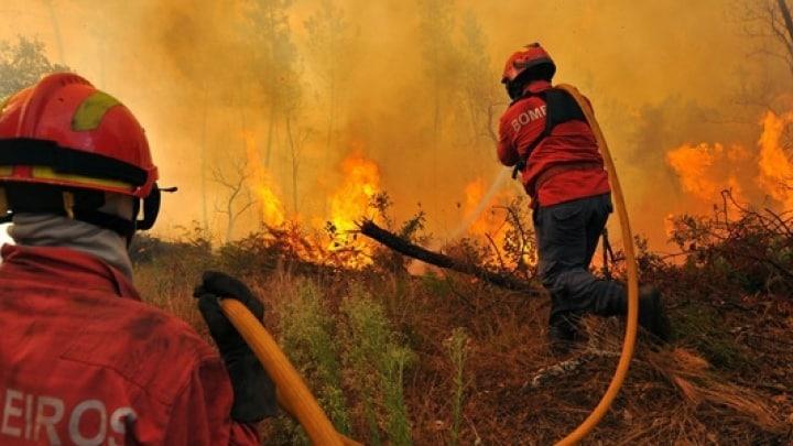 Fogo intenso em Vila de Rei e vários outros no Distrito, especialmente na Sertã